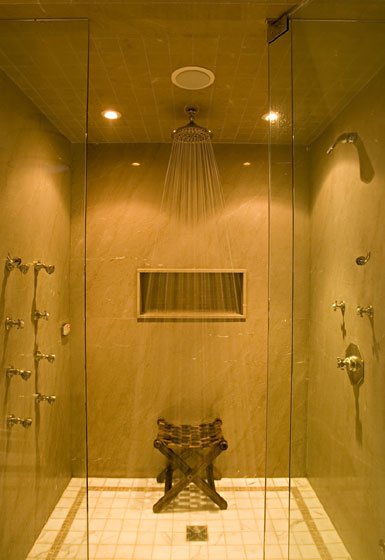 Michael Preston Design - Forest Hill Residence shower